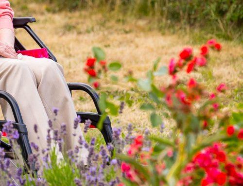 Austauschtreffen für ehrenamtliche Seniorenbegleiter*innen in Besuchsdiensten