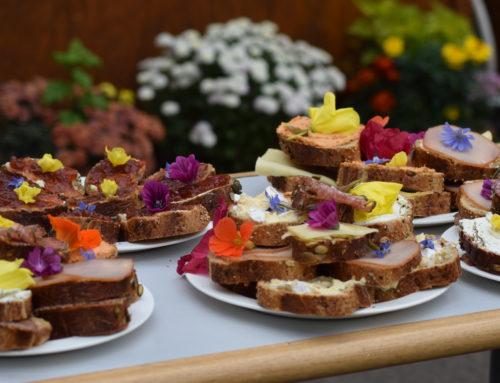 Einladung zum Interkulturellen Picknick am 19.06.2019 im Volksbad Buckau