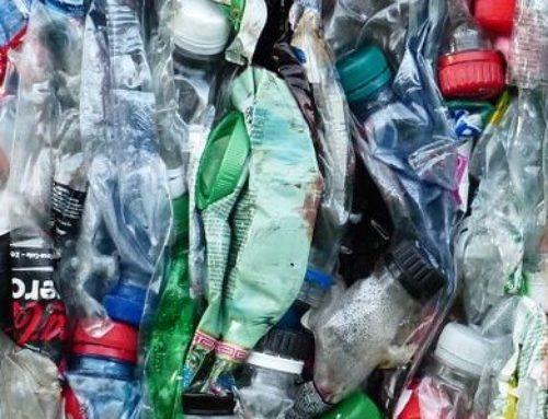 Engagementaktionstage gegen die Umweltverschmutzung