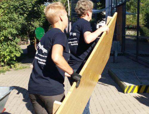 Eintagsfliegen unterstützen gemeinnützige Organisationen