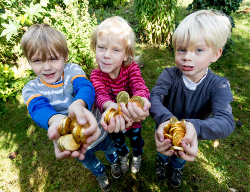 MWG-Stiftung fördert kleine Projekte in Magdeburg