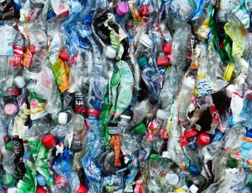 Müllsammel-Aktion. Treffpunkt Hegelstraße
